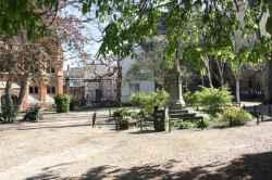 Photograph of All Saints Garden